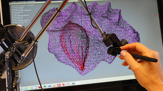 Paula Dawson using Holoshop haptic interface to generate content for digital holographic prints.